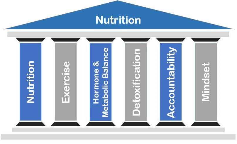 Nutrition pillar of health